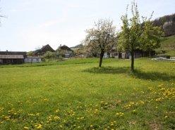6 maison disponibles à 10 minutes de la cité médiévale d'Estavayer-le-Lac